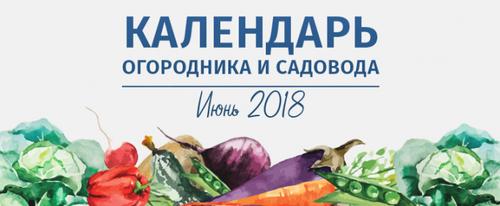 Лунный календарь огородника и садовода на июнь 2018