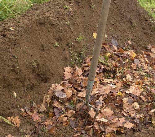 Как улучшить структуру почвы
