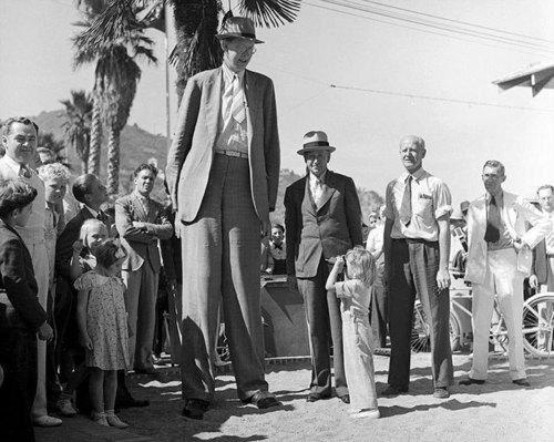 История о самом высоком человеке в истории