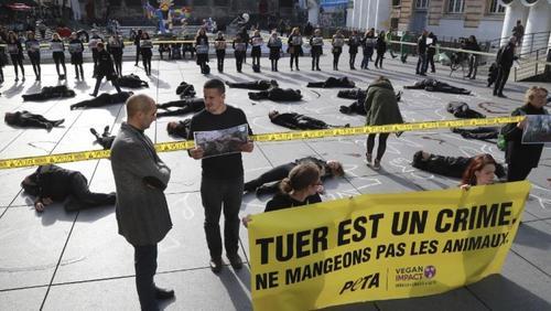 Французские мясники попросили у государства защиты от веганов
