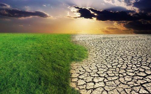 Ученые: климатическая катастрофа неизбежна