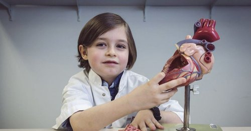 В Бельгии восьмилетний мальчик-вундеркинд закончил среднюю школу за полтора года