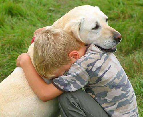 2 июля в мире отмечают приятный праздник - Международный день собак