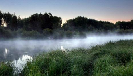 25 июля – Прокла-плакальщика: Приметы и суеверия