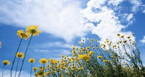 Прогноз погоды в Украине на 3 августа