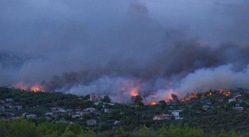 В Греции задержан подозреваемый в поджогах леса