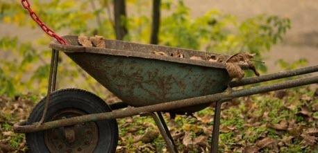 Осенние работы, которые улучшат урожай в будущем году