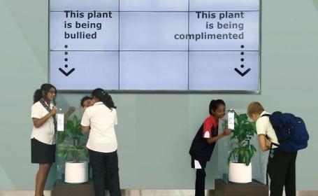 Что будет, если оскорблять растение: любопытный эксперимент