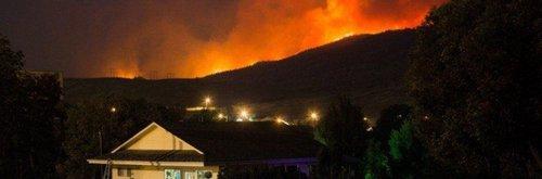 Сезон лесных пожаров в Британской Колумбии стал вторым по разрушительности за всю историю