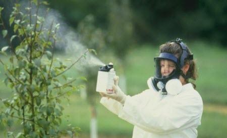 Здоровье сада: есть ли альтернатива пестицидам