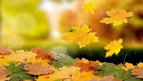 Прогноз погоды в Украине на 3 октября