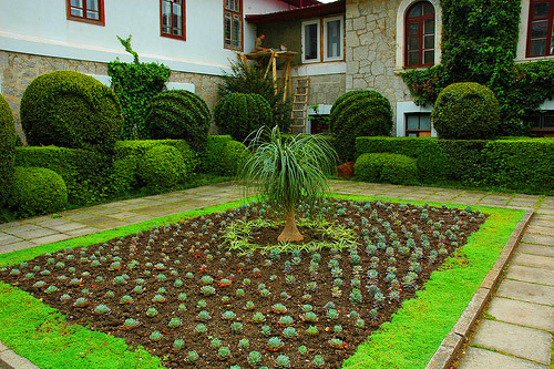 Достопримечательности Украины: Никитский ботанический сад