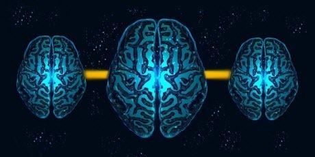 Ученые впервые объединили три мозга с помощью интернета