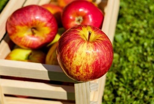 Регулируем вкус яблок