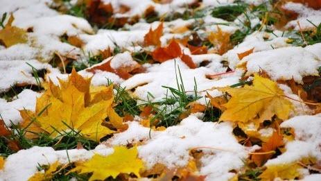 1 ноября – день святого Садока, Иванов день: приметы и суеверия