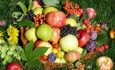 Как дольше сохранить фрукты и овощи