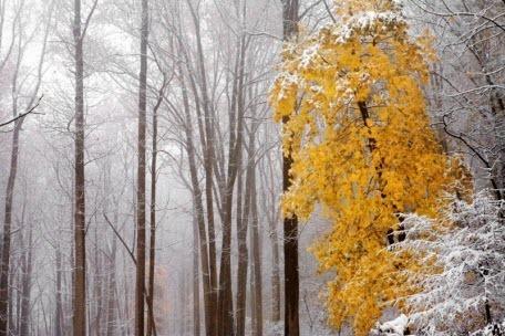 5 ноября – День апостола Иакова (Якова): приметы и суеверия