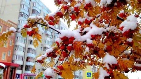 Прогноз погоды в Украине на 13 ноября