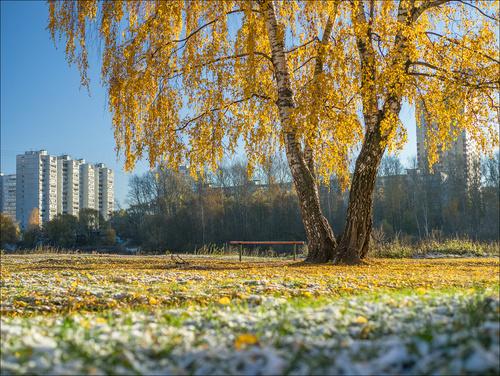 Прогноз погоды в Украине на 14 ноября