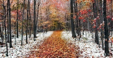 Прогноз погоды в Украине на 18 ноября