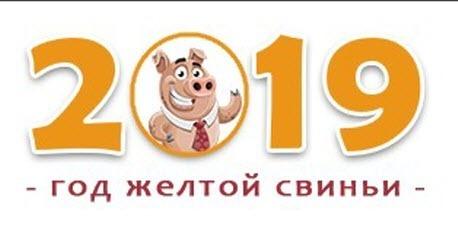 В чем встречать Новый год 2019 (год Свиньи) по знакам зодиака