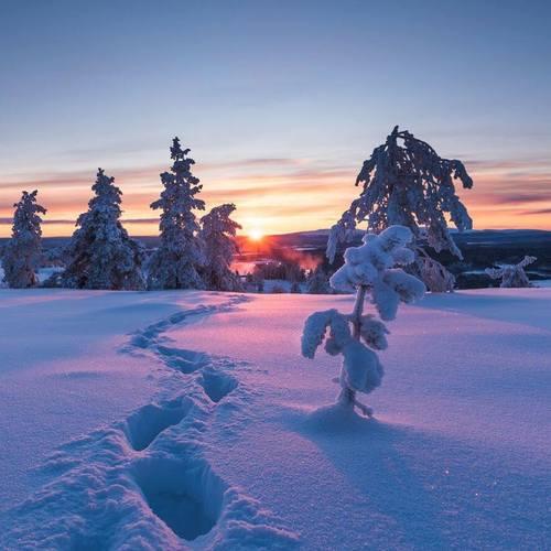 Прогноз погоды в Украине на 2 декабря