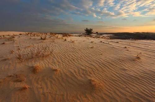 Достопримечательности Украины: Харьковская область — Бугристые пески
