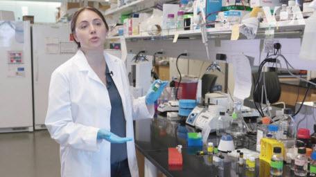 Українські науковці у США випробовують революційний метод лікування раку. Відео