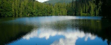 Достопримечательности Украины: Озеро Синевир