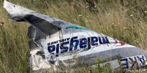 По заявлению адвоката семей жертв МH-17 РФ сбила самолет преднамеренно