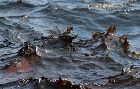 Крым на пороге экокатастрофы: в море превышена концентрация нефти