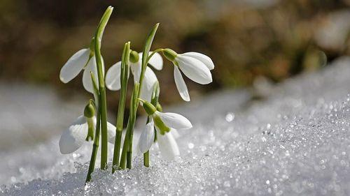 Прогноз погоди в Україні на 7 березня
