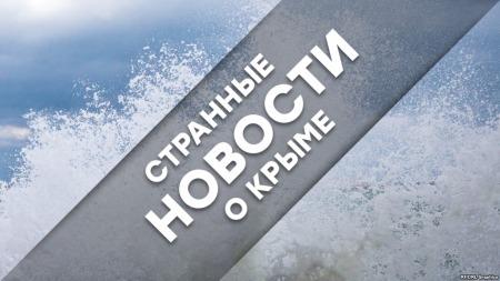 Странные новости о Крыме: привет из Армянска и тюльпаны от «зеленых человечков»