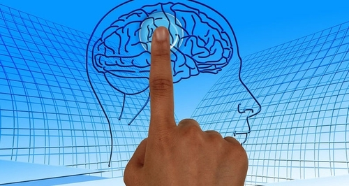 Сохраняем молодость мозга