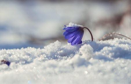 Прогноз погоди в Україні на 24 березня