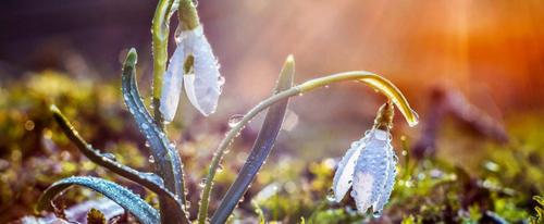 Прогноз погоди в Україні на 30 березня