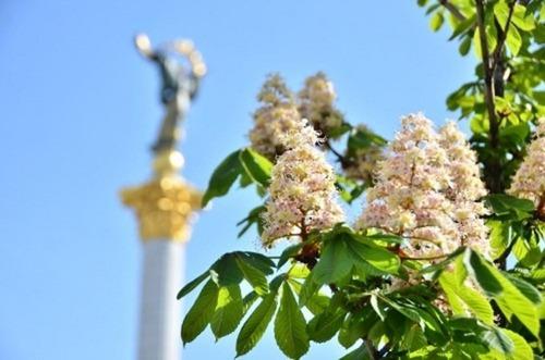 Прогноз погоди в Україні на 27 травня