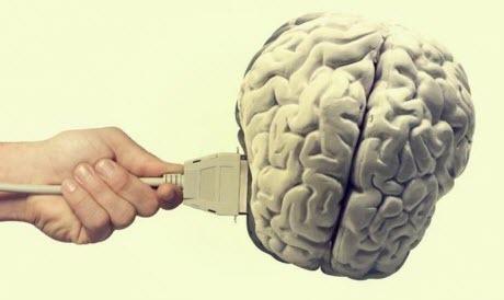 Мозг онлайн. Как и когда будет создана гибридная цивилизация