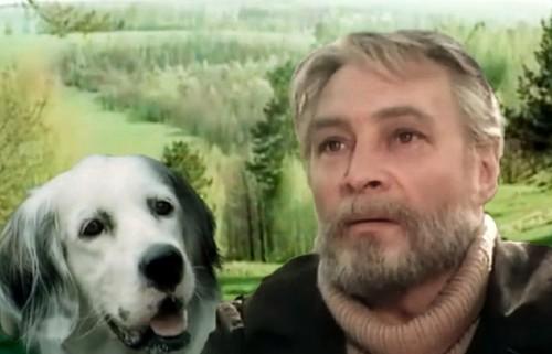 «Белый Бим Черное ухо»: Номинация на «Оскар» и трагическая судьба четвероногого актера