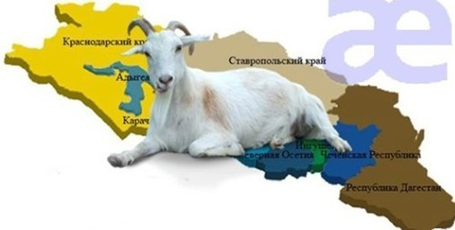 """""""Коза для северного Кавказа"""" - Авраам Шмулевич"""