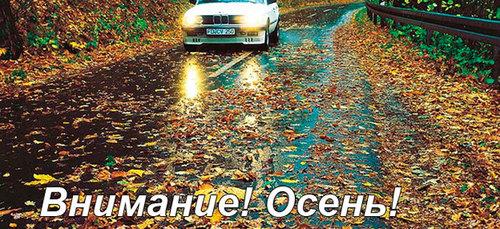Готовим автомобиль к осени и дождям