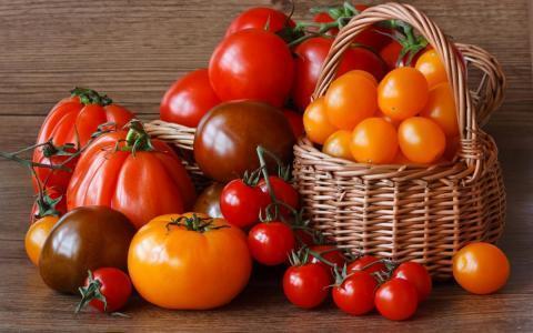 Как правильно собрать томаты: секреты, которые помогут сохранить помидоры свежими до весны