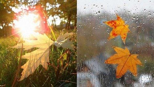 Прогноз погоди в Україні на 1 вересня