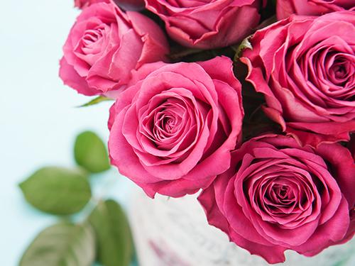 """Притча """"Роза — символ мира и любви"""""""