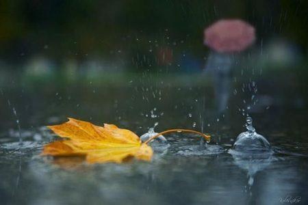 Прогноз погоди в Україні на 11 жовтня