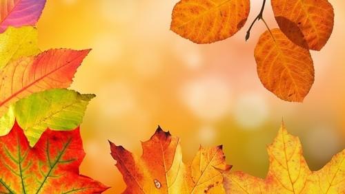 Прогноз погоди в Україні на 12 жовтня