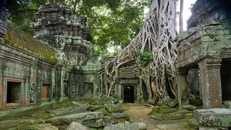 Затерянный город развитой древней цивилизации обнаружили в джунглях Камбоджи