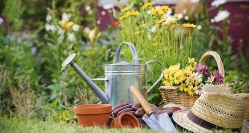 Готовка, уборка и садоводство продлевают жизнь