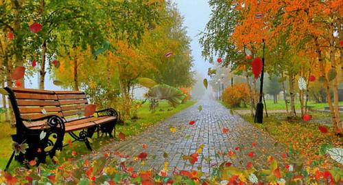Прогноз погоди в Україні на 1 листопада