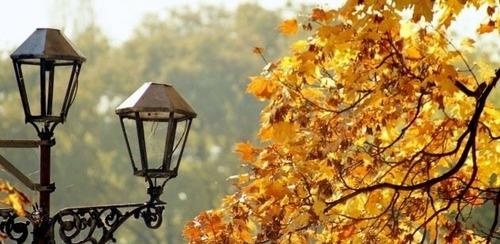 Прогноз погоди в Україні на 2-3 листопада